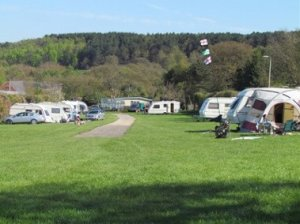 Birchwood Farm Caravan and Camping Site