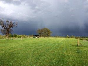 Eves Hill Farm Campsite