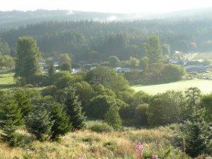 Border Forest Park