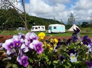 Cefn Cae Camping