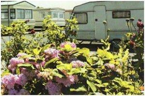 Hazelbrook Caravan Park