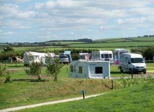 Widemouth Fields