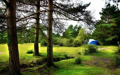 Roundhill Caravan Park and Campsite