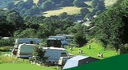 Cwmcarn Forest Drive Camp Site