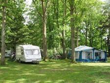 Alpine Grove Touring Park