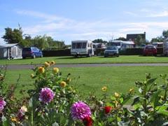 Webbers Caravan Park